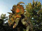 A 20 foot long Albertaceratops wanders a Cretaceous forest 77 million years ago in what is today Alberta, Canada. . . Like the better known Triceratops, Albertaceratops was a Ceratopsid, a large four-legged plant-eating dinosaur characterized by beaks, rows of shearing teeth in the back of the jaw, and elaborate horns and frills. While they resemble defensive shields, the frills are in fact relatively fragile, suggesting that they may have served a purpose other than protecting against a brute force attack. One possibility is that the frills were employed as visual displays in order to intimidate rivals and attract the opposite sex. While no color pigmentation has been preserved in the fossil remains of Ceratopsids, it's not unreasonable to suggest that they may have been very colorful, like many reptiles and birds are today.