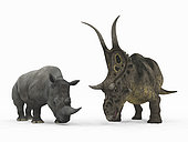 An adult Diabloceratops from 70 million years ago is compared to a modern adult White Rhinoceros (Ceratotherium simum). The Diabloceratops is 8 feet tall at the shoulder and weighs 6000 pounds, while the White Rhinoceros is 6 feet tall at the shoulder and weighs 7,000 pounds.