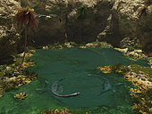 A pair of 40-foot-long Elasmosaurus engage in a swimming courtship dance in a secluded pool 80 million years ago in what is today North America. The gull-like birds are Ichthyornis, the Cretaceous ecological equivalent of modern seabirds such as gulls, petrels, and skimmers. . At over two tons, Elasmosaurus was an air-breathing carnivorous reptile with flippers for limbs and a relatively small head with sharp teeth. More than half of its length was neck which had more than 70 vertebrae, more than any other animal.