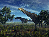 A pair of massive Isisaurus colberti wander lush plains 70 million years ago in what is today central India. Formerly known as Titanosaurus colberti, Isisaurus colberti was a leaf-eating herbivore that grew up to 60 feet long and weighed as much as 15 tons.