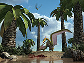 A pterosaur flying reptile lands next to some carrion. Pterosaurs, which lived 220 to 65 million years ago, were the first vertebrates to evolve powered flight. It is thought that the vertical crest on the head kept them stable while flying.