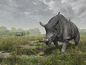 Brontotherium wander the lush Late Eocene landscape of South Dakota 35 million years ago. . Modern rhinoceroses have a symbiotic relationship with birds (variously known as oxpeckers or tick birds) that eat parasites they find on the rhino's skin and noisily warn of danger. No doubt similar symbiotic relationships existed between birds and the megafauna of the Eocene.