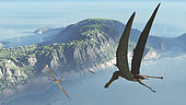 Species from the genus Anhanguera soar 105 million years ago over what is today Brazil. Anhanguera was a flying reptile with a wingspan of 15 feet, larger than any modern bird. Its diet is believed to have consisted primarily of fish.