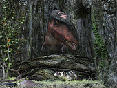 A rat-sized Purgatorius hides amongst the undergrowth of a Cretaceous forest while a 30 foot long, 2,000 pound tyrannosaur forages for its next meal in what is today the western United States. Bistahieversor is a genus of tyrannosauroid dinosaur named after Bisti/De-Na-Zin Wilderness where it was found. . Purgatorius is the genus for several species of small omnivorous mammals that are believed to be the among the earliest ancestors of modern-day chimps, rhesus monkeys, and humans. The extinction of the larger and more powerful dinosaurs may have been what led to world's domination by mammals today. . While there is no direct evidence that Purgatorius and Bistahieversor ever shared the same wilderness, this image is yet illustrative of the predator-prey relationship that characterized dinosaurs and mammals for many millions of years.