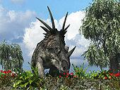 A 17-foot-long, three ton herbivorous ceratopsian dinosaur of the genus Styracosaurus samples flowers of the order Ericales amidst varieties of fern 76 million years ago in North America. Flanking the Styracosaurus are willows of the genus Salix.