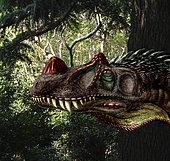 Ceratosaurus magnicornis of the Late Jurassic Period.