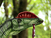 Dilophosaurus wetherilli with a piece of flesh hanging out of its mouth.