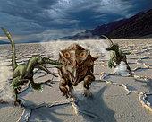 Velociraptors chase a Bagaceratops in a prehistoric desert.