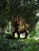 Styracosaurus in a forest.