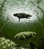 Scutosaurus karpinskii in prehistoric waters.
