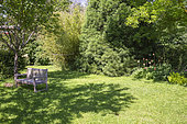 Jardin Cali Canthus, ornamental garden, decorative, visited by the public, bench, tranquility in the middle of the garden, Saint Maurice (67220), Alsace, Bas Rhin (67), Grand Est Region, France
