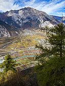 Vineyards in autumn, Valais, Switzerland.
