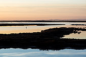 Sunset over the ponds of the Camargue Nature Reserve, France