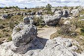 Mourres de Forcalquier rocks, Luberon Regional Nature Park, Alpes de Haute Provence, France