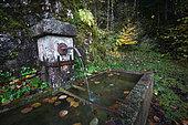 Fontaine, Septmoncel, place called Les Moulins, Jura, France