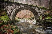 Rouffy and Valserine Bridge in autumn, Lélex, Ain, France