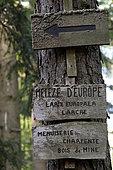 Sign on a trunk, European larch (Larix europaea), Bernstein national forest, place called Schuhlwaldplatz, Dambach-la-Ville, Bas-Rhin, France