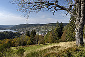 Town and lake of Gerardmer, Vosges, France