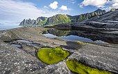 Tidal pool, rocky coast of Tungeneset, rocky peak Devil's Teeth, devil's teeth, Okshornan, Steinfjorden, Senja Island, Troms, Norway, Europe