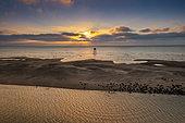 Walde lighthouse and grey seal (Halichoerus grypus) colony, les Hemmes de Marck, Opal Coast, Pas de Calais, France