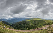 Panorama of the Hohneck massif in summer, Vosges, France