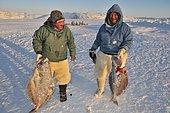 Inuit fishermen during longline fishing on Ilulissat Fjord, Greenland, Arctic North America, North America