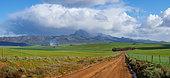 Rural scenery near Caledon with views across farm land towards Babilonstoring or Babylonstoren in the rain. Overberg. Western Cape. South Africa