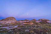 August 18, 2013 - The waxing gibbous moon above the blue shadow of the Earth and pink Belt of Venus band, with dark blue crepuscular rays converging on the anti-solar point in the east, at sunset, from the badlands of Dinosaur Provincial Park, Alberta, Canada.