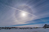 February 9, 2014 - An ice crystal lunar halo around the gibbous moon, with an aircraft jet contrail shooting across the scene, with a jet at far right, heading west in a polar flight over Churchill, Manitoba, Canada.
