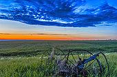 June 24, 2014 - Moon and Venus in conjunction at dawn, Alberta, Canada.