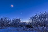 January 3, 2017 - Venus (brightest), Mars (between the moon and Venus), and the waxing crescent moon over a frosty scene in southern Alberta, Canada.