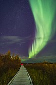 A aurora group is taking their aurora selfie shots on the boardwalk at Rotary Park in Yellowknife, Northwest Territories, Canada, under a grand sweep of an auroral arc. This was September 11, 2018 under a mild display of Lights. Illumination is from the aurora and from urban lighting nearby. . . The Pleiades and Hyades clusters are rising at left.