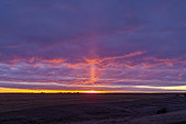 October 27, 2019 - A light pillar off the rising Sun in Alberta, Canada. This is caused by light reflecting off flat ice crystals in the air on this frosty fall morning.