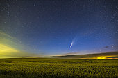 Comet NEOWISE (C/2020 F3) over a ripening canola field in southern Alberta, Canada, on the night of July 15-16, 2020. Light pollution from a nearby gas plant reflecting off low clouds and a rain shower adds the yellow at right.