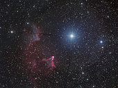 Variable star Gamma Cassiopeiae, with associated emission and reflection nebulae.