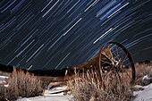 Abandoned farm equipment against a backdrop of equatorial star trails at a location high in the La Sal  Mountains Near Moab, Utah