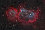Interstellar embryo IC 1848, the Soul Nebula.