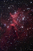 The bright star cluster known as Melotte 15. Melotte 15 is embedded within and illuminates the central portion of the much larger glowing nebula identified as IC 1805, located in the constellation Cassiopeia.