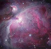 M42, The Orion Nebula.