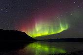 Aurora borealis with Big Dipper over Kluane Lake, Yukon, Canada.