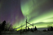 Aurora borealis over a ranch, Whitehorse, Yukon, Canada.
