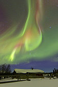 Aurora borealis and Orion's Belt light up the sky above a log cabin at Whitehorse, Yukon, Canada.