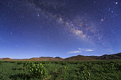 The Milky Way appears over a field of hulless barley in Tibet, China.