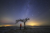 A stargazer is standing under a tree with the Milky Way in summer triangle shining overhead.