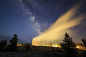 Our Milky Way galaxy above the erupting Old Faithful Geyser at Yellowstone National Park, Wyoming, USA. Old Faithful can be seen propelling a stream of hot water over 30 meters in the air.