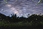 Star and firefly trails at Fujian Tulou in China. Milky Way galaxy sparkles in the background.