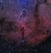 IC 1396, The Elephant Trunk Nebula.