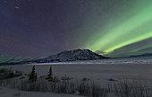 Northern lights, Kluane National Park, Yukon, Canada.