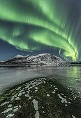 Northern lights, Carcross, Yukon, Canada.
