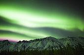 Bright aurora borealis over Annie Lake, Yukon Territory, Canada.